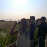 A la station de lagunage de Rochefort